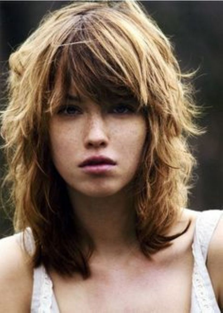 best shag haircuts 25 best ideas about shaggy haircuts on 3660