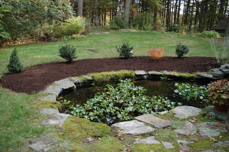 25 trending fish ponds ideas on pinterest outdoor fish for Fishing ponds columbus ohio