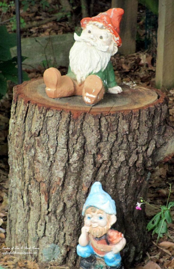 Garden Gnomes (Garden Of Len U0026 Barb Rosen)