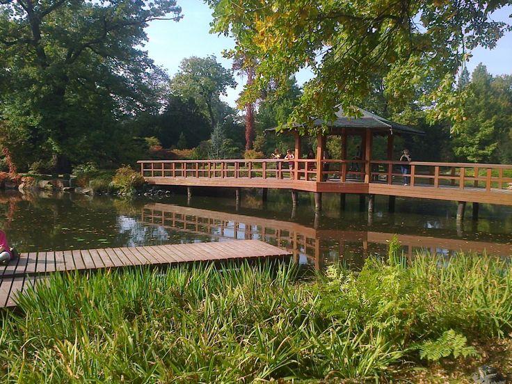 Wroclaw japanese garden