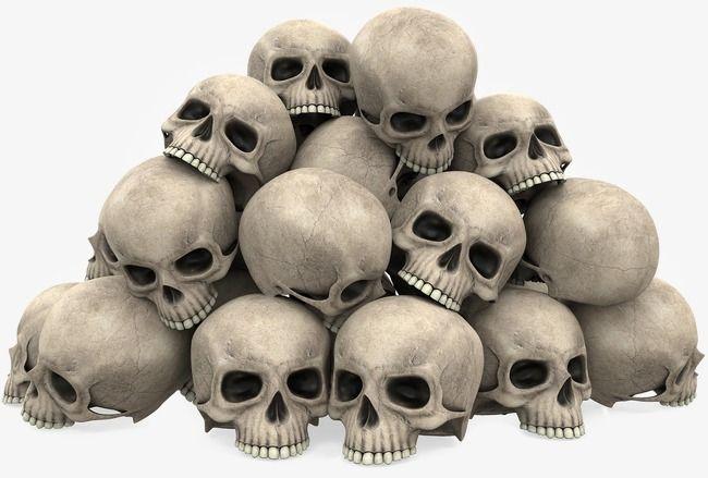 Um Monte De Caveira O Terror Caveira O Dia Das Bruxas Imagem Png E Psd Para Download Gratuito Skulls Drawing Skull Art Drawing Skull