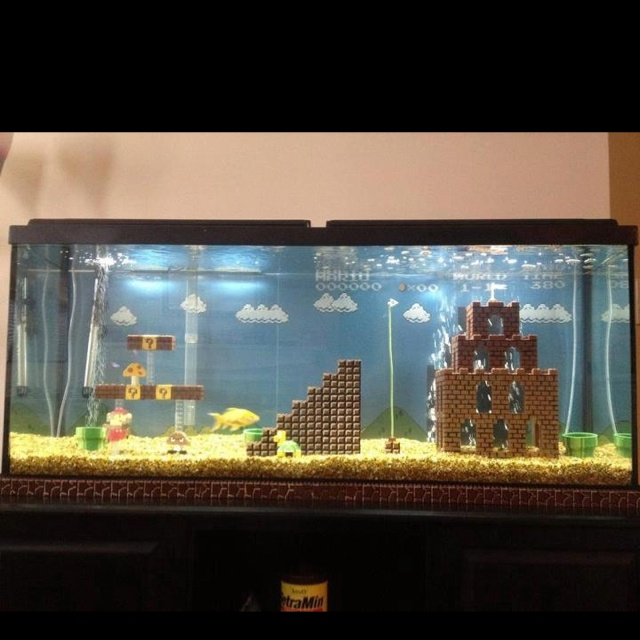 Pretty cool fish tank idea