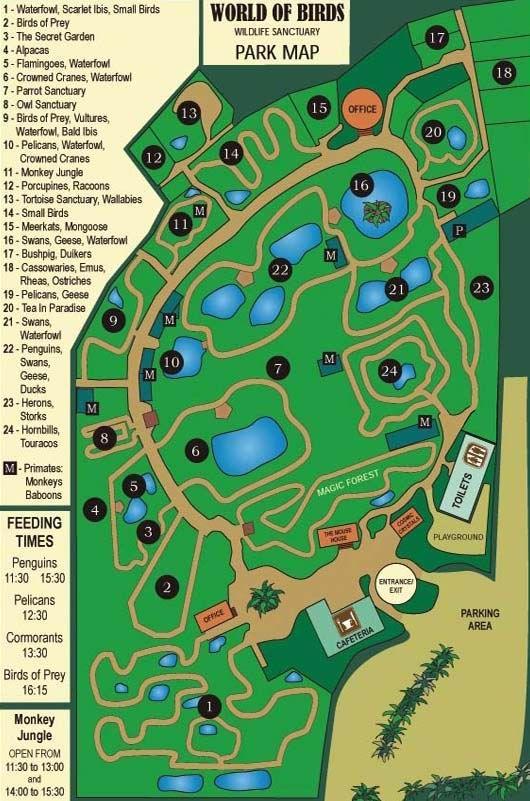 World of Birds Wildlife Sanctuary and Monkey Park - Largest Bird Park in Africa!