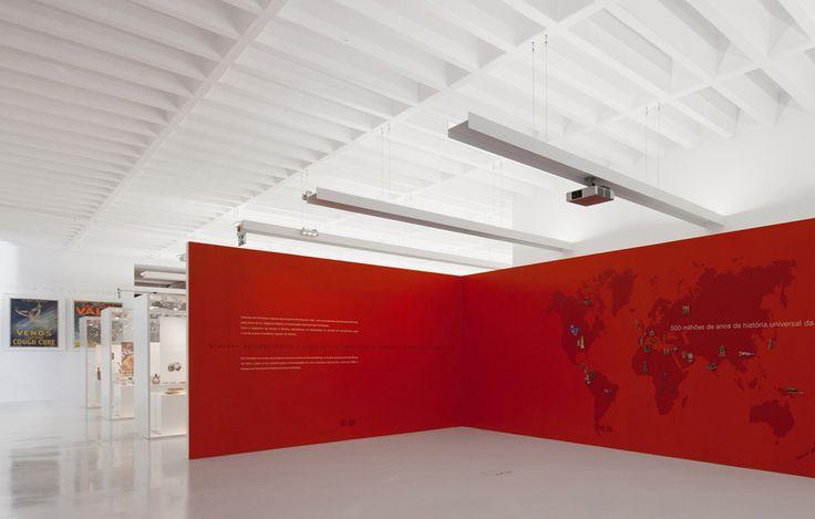 Galería - Museo Farmacéutico / Site Specific Arquitectura - 11