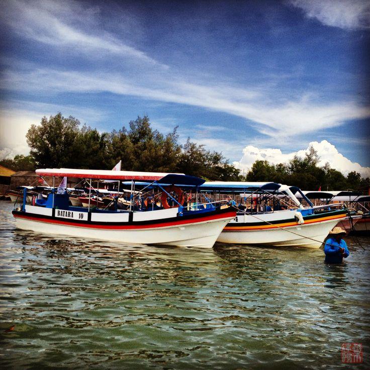 Boat @ Turtle Island
