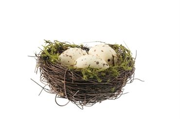 Moss turf grass twig nest with eggs