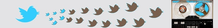 People say Twitter is like a river, you see it flowing but you may not be looking at it when the fish is passing. Your twitter timeline is the same, you may not be looking when an important link or a relevant comment is posted.    We offer you to store part of your timeline on a database and go through them in a more static way with no hurries. You will have your own website which can be branded with your favorites colors, background, header image …