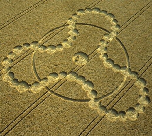 1837 best Loraine s Beauty of Crop Circles images on Pinterest