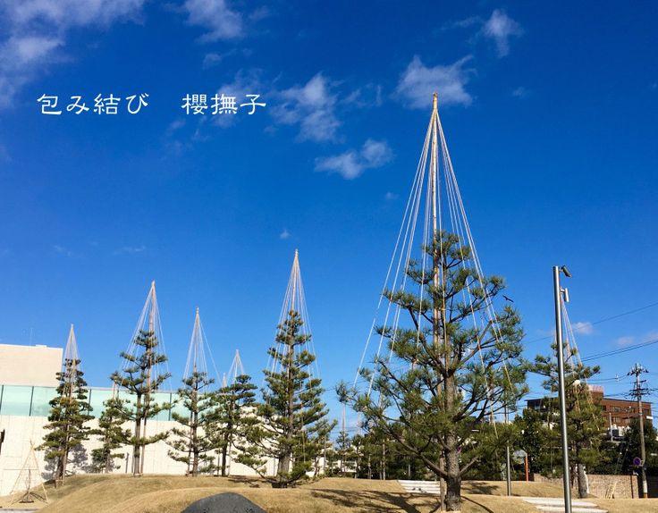 櫻撫子つれづれ日記|包み結び 櫻撫子のブログ-11ページ目