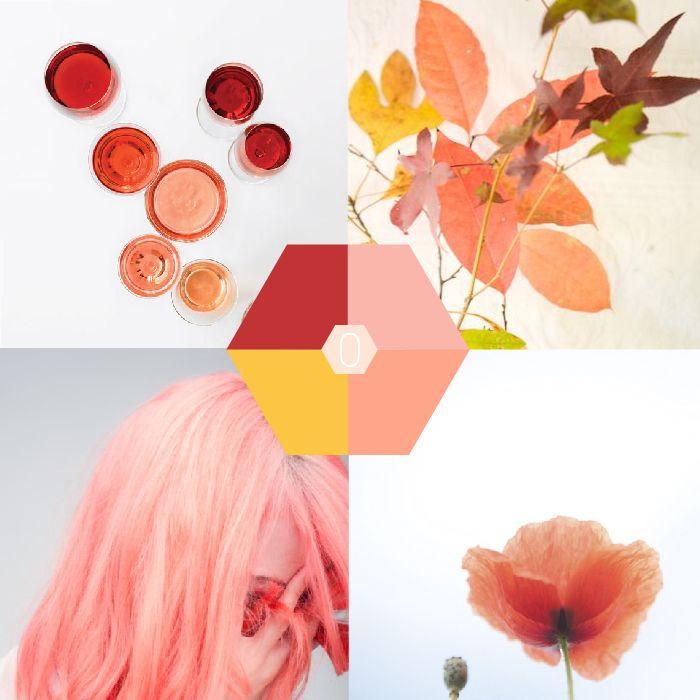Kleur-palet: koraalrood, roze en geel   Color-palette Coarl, red, pink, yellow   OCHER