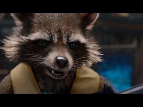 Guardians of the Galaxy Rocket Raccoon Dress Up Halloween Costume