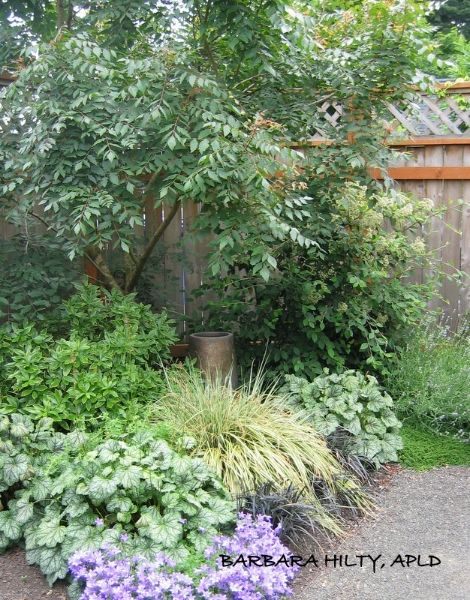 See Barbara Hilty\u0027s landscape design portfolio which has before and after photos along with s&les & See Barbara Hilty\u0027s landscape design portfolio which has before and ...