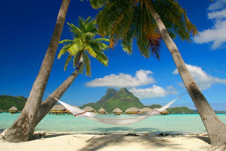 Close your eyes and imagine yourself in Bora Bora. We're doing it with you.