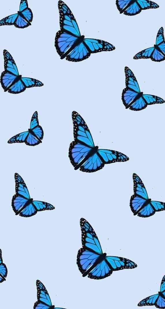 Spring Iphone Wallpaper Butterfly Drawing Iphone Wallpaper Butterfly Butterfl En 2020 Con Imagenes Mariposas Fondos De Pantalla Fondos De Pantalla Tiernos Fondos De Pantalla Verde