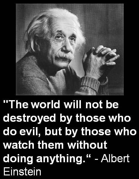 """The world will not be destroyed by those who do evil, but by those who watch them without doing anything"" - Albert Einstein ~Think before you vote~"