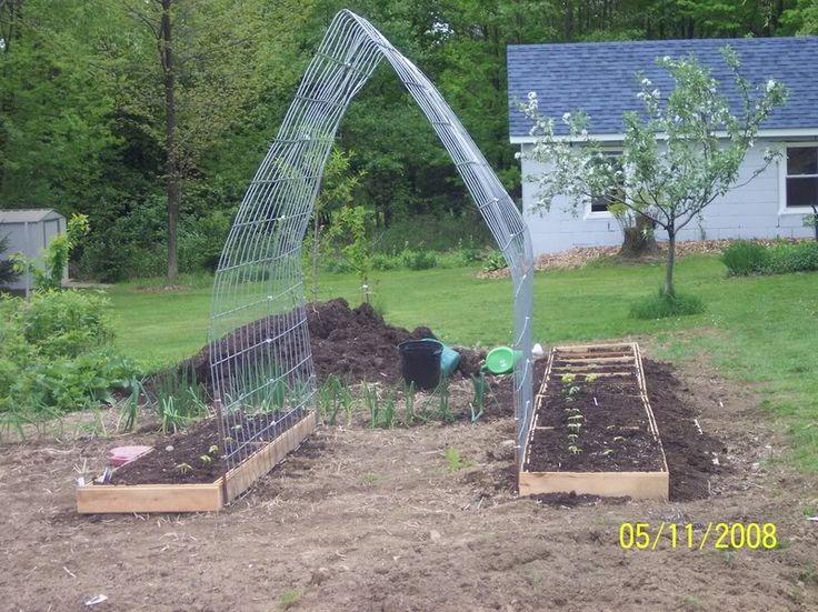 Best Garden Plant Support Images On Pinterest Vegetable - Vegetable garden trellis ideas