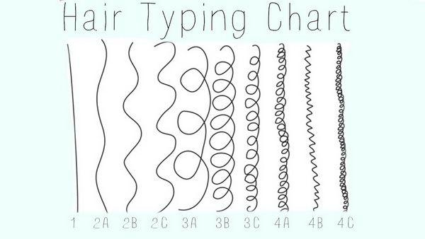natural hair type chart