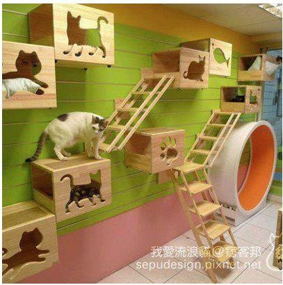 Quelques idées pour aménager l'espace de votre chat !      La MODE by Touch-arts