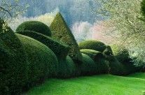 Clipped topiary hedge Little Malvern Court