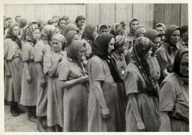 """Women fit for work after the delousing process. The disinfection of those not selected for the gas chambers, and the shaving of their heads, was all part of the """"registration""""  process at the camp. After they finished, they were given the prison uniforms seen in the picture"""