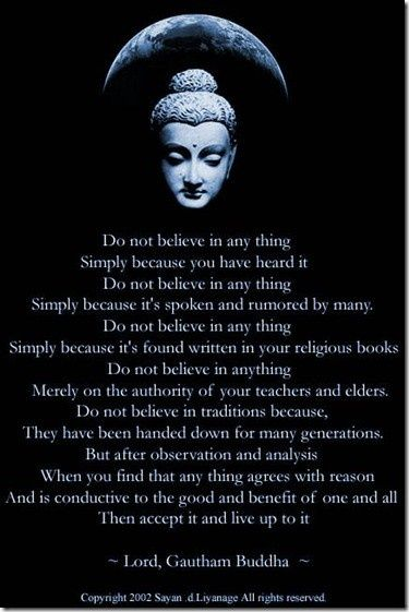 Do not believe any thing... ~ the Buddha.   elephant journal ..*