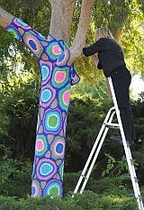 yarn bombed tree at Los Angeles Pierce College, 2011.  Knitters, crocheters and artists from the Los Angeles Yarn Collective spent the day changing the face of landmarks at the Woodland Hills community college campus