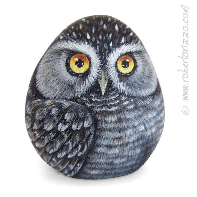 painted owl on pebbles | Original Hand Painted Northern Hawk Owl Rock Surnia Ulula