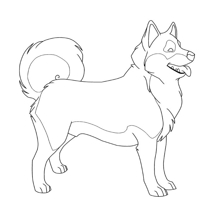 coloring pages huskys - photo#4
