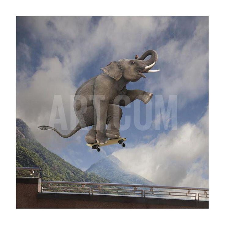 Elephant skateboarding Art Print by Lund-Roeser at Art.com