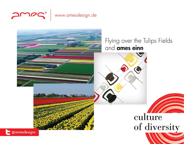 Flying over the Tulips Fields and ames einn.  http://amesdesign.de/