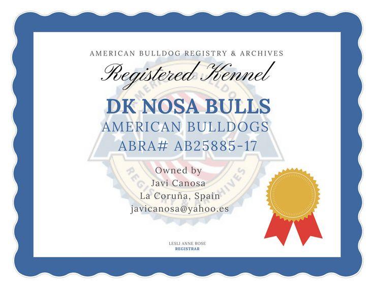 ABRA Registered American Bulldog Kennel  La Coruna Spain