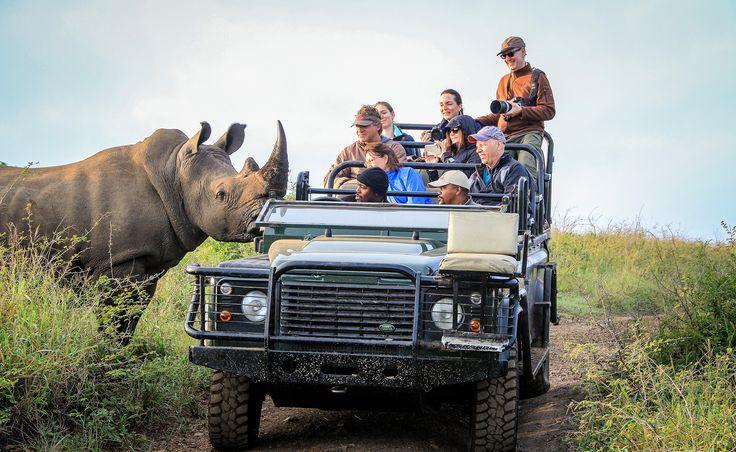 Well, hello there!  📷: supplied #rhino #safari #gamedrive #wildlife #bigFive
