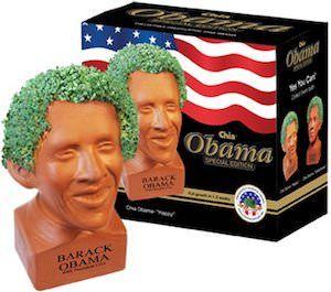 Happy Barack Obama Chia Pet