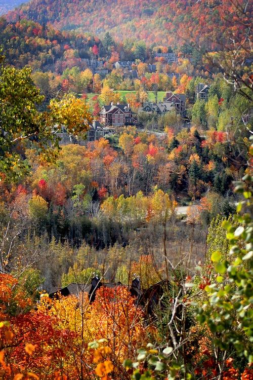 Fall colours, Mont-Tremblant, QC