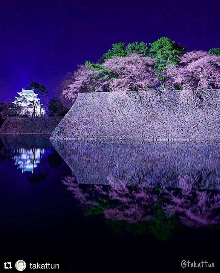 いいね!1,405件、コメント10件 ― 名古屋インスタ交流会さん(@insta_nagoya)のInstagramアカウント: 「【名古屋城の夜桜】 素敵すぎるお写真 ✨ ライトアップされた桜と名古屋城の!そして、水面に映るリフレクションが美しすぎる今が旬のステキすぎる幻想的な一枚です‼️✨ ・ ・ 今回は…」