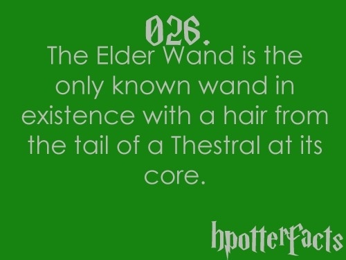 The Elder wand's core HP fact (wow interesting and a Thestral tail hair makes sense since Death made the wand)