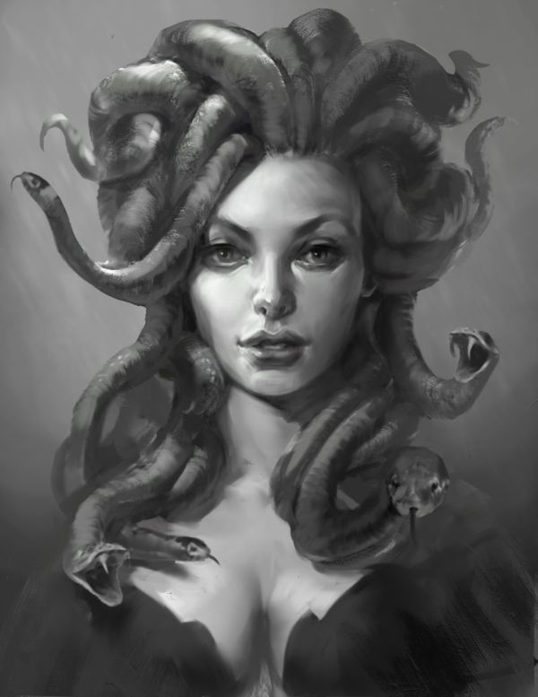 This depiction, like many others, puts a heavy emphasis on the beauty of Medusa rather than the ugly parts of her.  This focus on beauty is common among fan art because it allows them to juxtapose her murderous looks with a truly beautiful face.