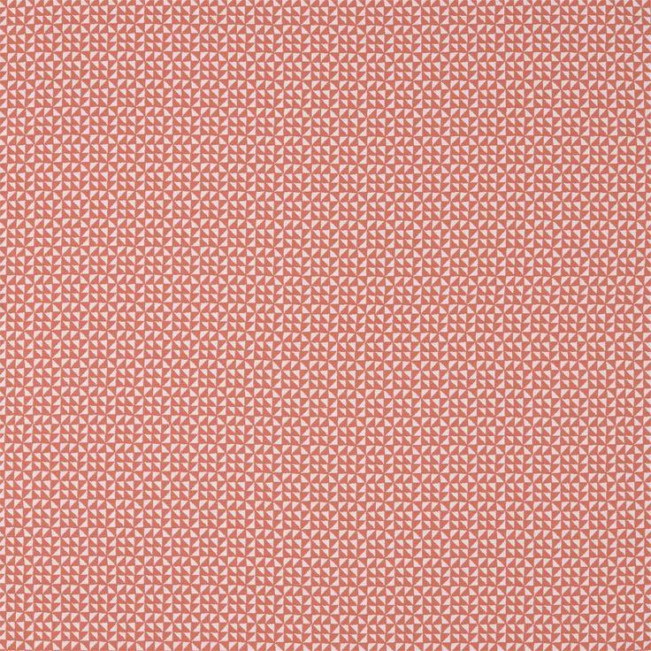 Image result for harlequin viscano