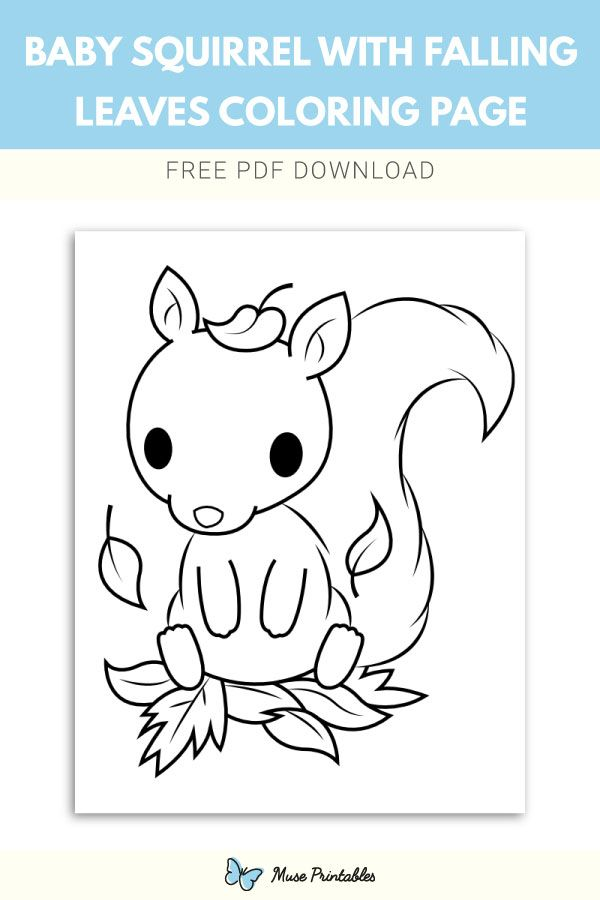 Free printable baby squirrel with falling leaves coloring ...