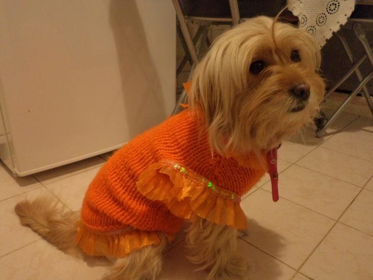 Foxy's knitted orange sweater..