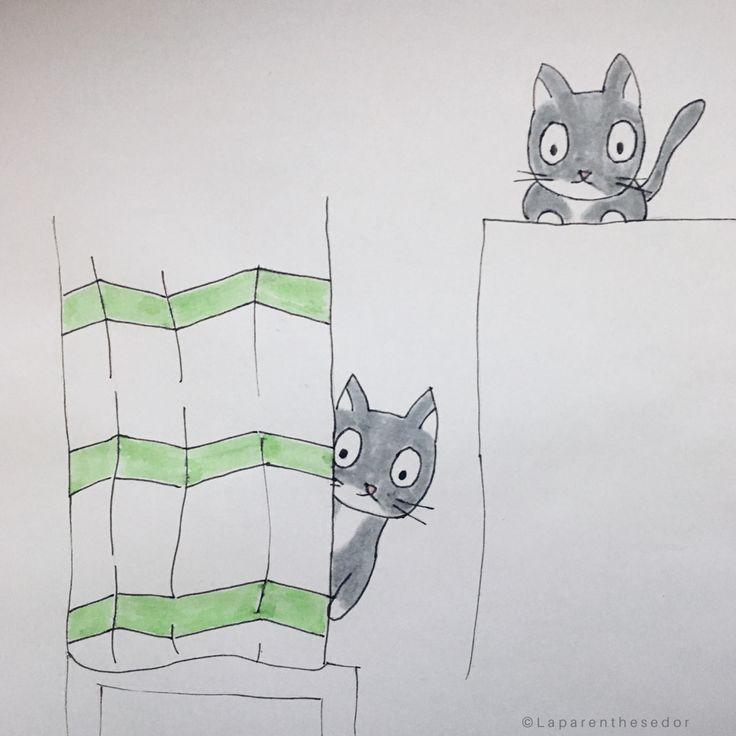 «Les chats n'aiment pas l'eau»  #BD #chat #BDchat #blog