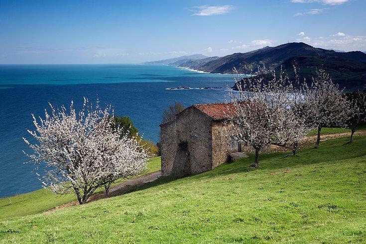 Primavera en la Cornisa Cantabrica. Spring in Zarautz. Basque Country. Spain