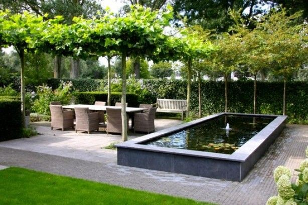 Verhoogde vijver met terras More interested in canopy..need ideas for privacy from upstairs neighbours in summer, sun in winter