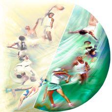 Rhodiola énergie & sport - Rhodiola rosea rhodiole La rhodiola fortifiant, un reconstituant musculaire, augmente la performance chez le sportif, amplifie la résistance à l'effort, rhodiola cardio-protecteur, régulateur du muscle cardiaque. La rhodiola normalise les battements du coeur, de la contraction cardiaque, ab... http://www.rhodiola-rosea-rosavine.com/wp-content/uploads/2015/03/multi_sport.jpg - Par Rhodiocamiau sur Rhodiola rosea rosavine     http://www.rho