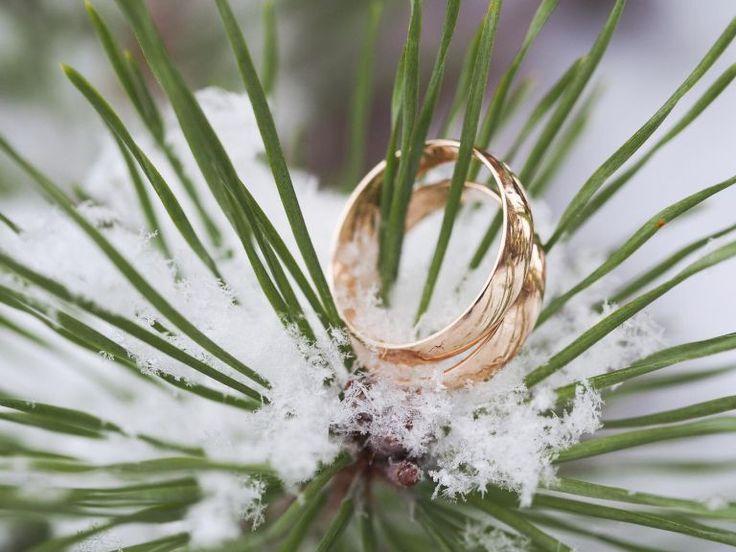 wedding rings in a tree in winter Laks-Art/