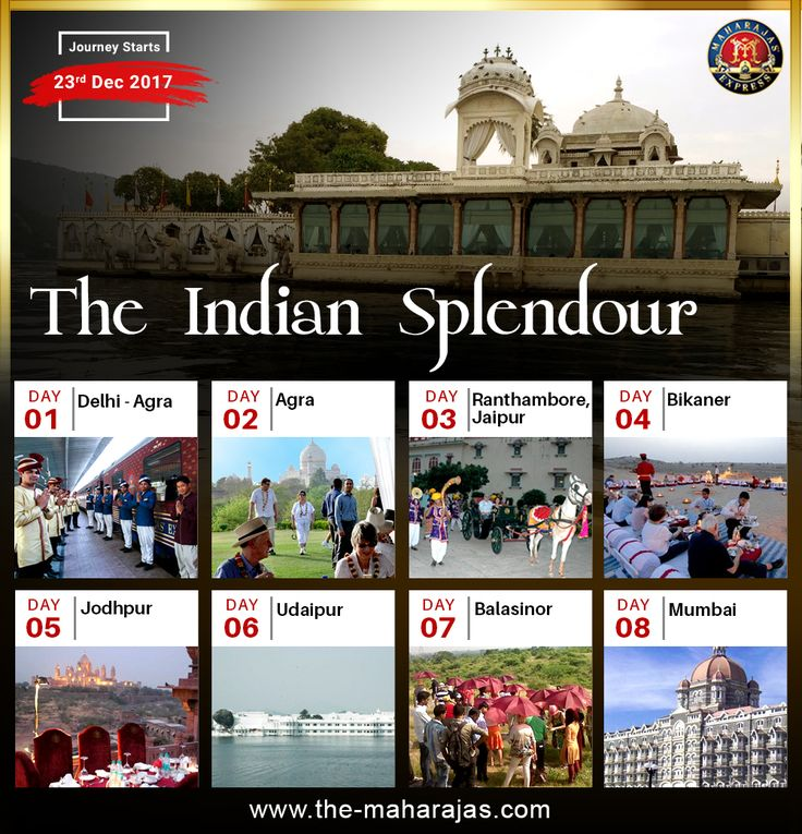 The Indian Splendor - Wonderful Journey Through The Alluring Places of India . Experience the 8 Days Royal Tour with Luxury Train The Maharajas' Express starts on 23rd Dec 2017.  #Royalityontrain #luxurytravel #indiatravel #incredibleindia #luxuryindia #luxurytrainsindia