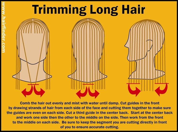 Hairfinder.com's How To Trim Hair Guide