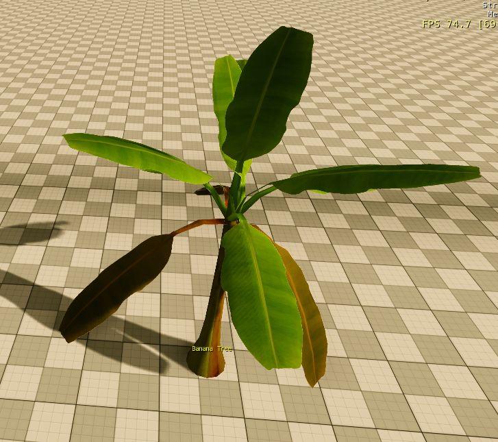 3D - Banana Tree