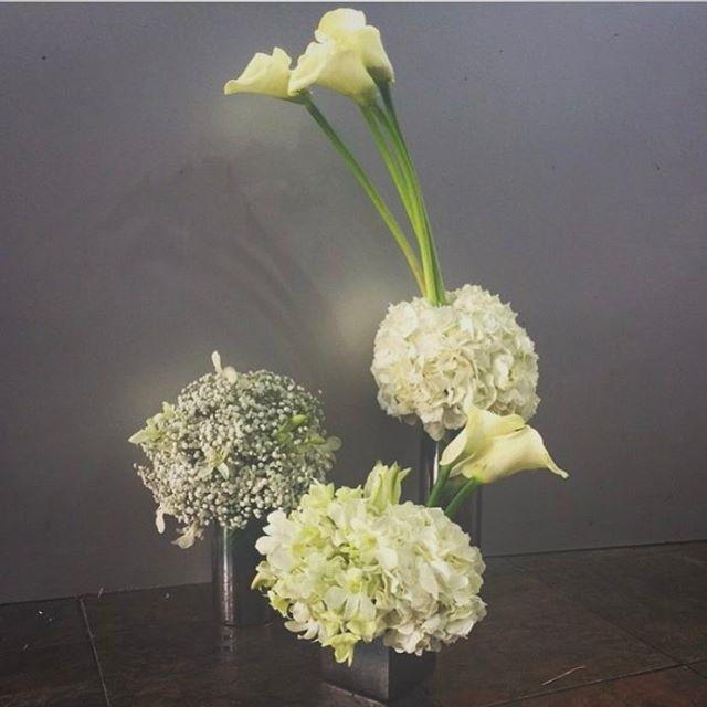 ورود طبيعية بجودة عالية تقدم بتميز لمناسباتك وأيامك الخاصة.  Fresh and Quality imported flowers to celebrate today's special event.  #dxb #uae🇦🇪 #world_trade_center #Lebanon #Syria #beautiful #flowershop #romantic #events #weddings #dubaiflowershop #sindyanflowers #flowerarrangement #corporateevents #2017 #مسكات #events #سنديان #mydubai #weddingstyle #weddingplanner #makkah #dubaiflowers #السعودية #weddingflowers #bridestyle #weddingstyling #destinationweddings #specialevents…