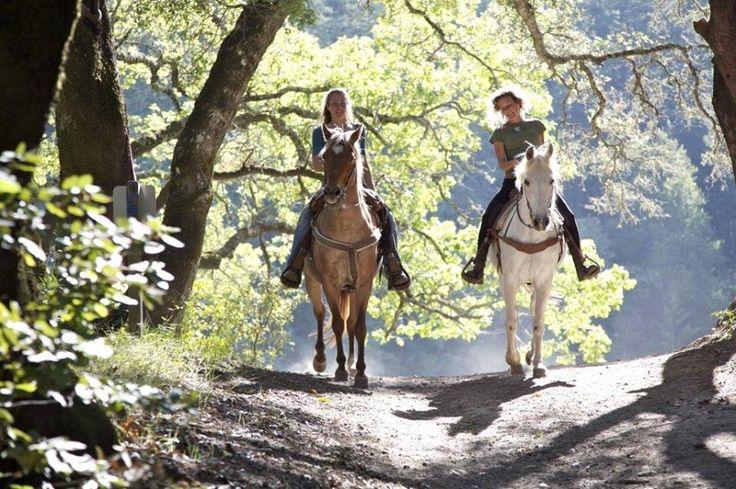 Horseriding! http://www.tresorhotels.com/en/offers/106/ippasia-sth-fysh